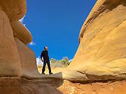 Southwest Utah, Friend explores Devil's Garden, Escalante National Monument, Escalante, UT, American West