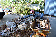 Daniel gathers rocks that will line the edges of my water harvesting basins.