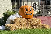 News-Halloween-Oct 21, 2020
