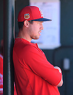 Pitcher Tyler Skaggs watches from the dugout during the Angels' Spring Training home-opener against the Milwaukee Brewers at Tempe Diablo Stadium in Tempe, AZ on Saturday, February 25, 2017. (Photo by Kevin Sullivan, Orange County Register/SCNG)