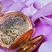 Groom's antique pocket watch with blue rose petals.