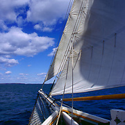 The jib and foresail of The Schooner Appledor out of Camden Maine