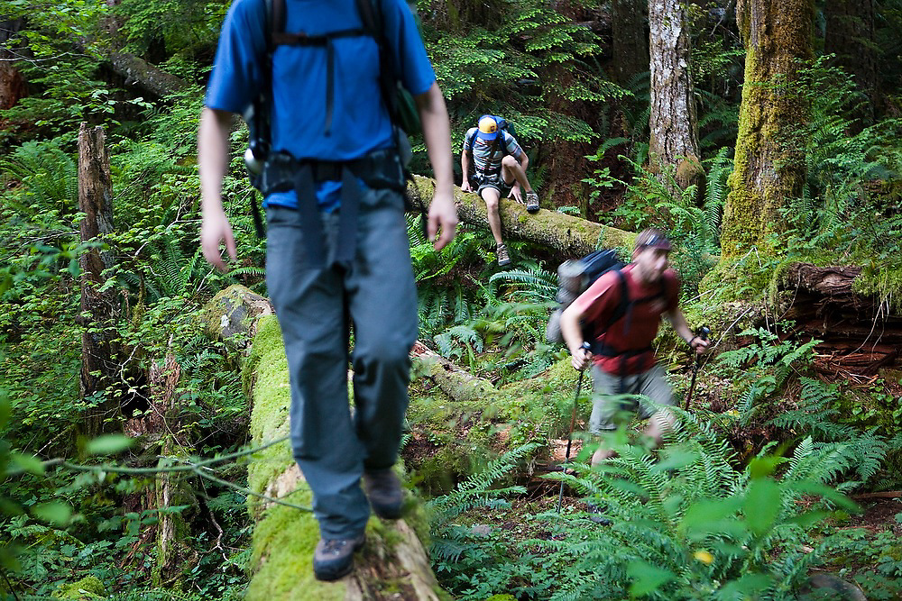 Backpackers scramble over logs to Seven and a Half Mile Camp, along the Eagle Creek Trail, Columbia River Gorge National Scenic Area, Oregon.