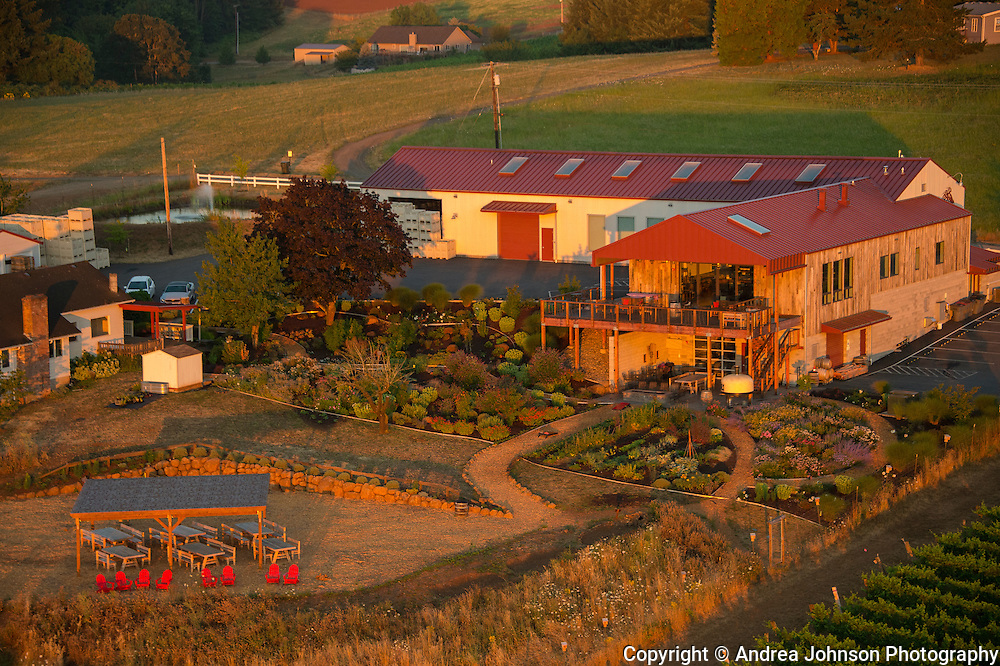 Aerial view over Brooks estate vineyard & winery, Eola-Amity Hills, Willamette Valley, Oregon