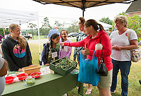 Emma Dargin, Dantia and Ari Braccio, Brianna and Kathie Dargin buy garlic scapes from Donald Womack of Lindon Garlic Farm at the Gilford Farmers Market Saturday morning.  (Karen Bobotas/for the Laconia Daily Sun)