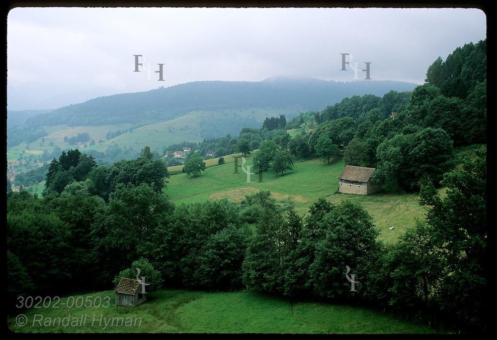 Farm outbuildings & summer homes dot pastoral slopes of Vosges Mountains; Soultzeren, Alsace. France