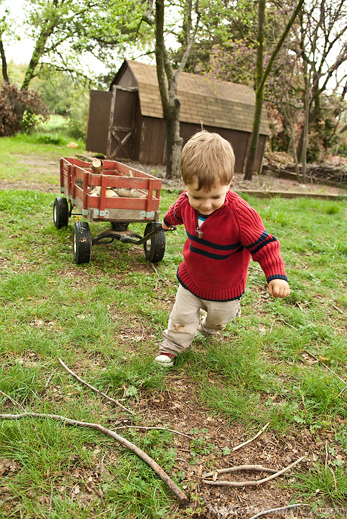 A two-year-old boy pulls a wagon loaded with firewood
