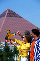 Man and woman handling a parrot at Moody Gardens in Galveston Texas