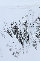 dovrefjell national park , norway, february