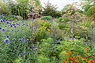 Bluebell Cottage Gardens in August