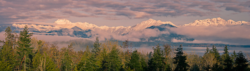 fresh snow blankets the Olympic Mountain higher elevations as viewed in panorama from across the Hood Canal of Puget Sound, Washington state, USA
