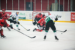 KOBLAR Gregor during Alps League Ice Hockey match between HK SZ Olimpija and HDD SIJ Jesenice, on February 12, 2019 in Ice Arena Podmezakla, Jesenice, Slovenia. Photo by Peter Podobnik / Sportida
