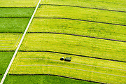 Nederland, Utrecht, Eembrugge, 07-05-2018; transport vers gemaaid gras in de polder, onderdeel Nationaal Landschap Arkemheen-Eemland.<br /> Transport freshly mown grass in the polder, part National Landscape Arkemheen-Eemland.<br /> <br /> luchtfoto (toeslag op standard tarieven);<br /> aerial photo (additional fee required);<br /> copyright foto/photo Siebe Swart