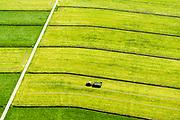 Nederland, Utrecht, Eembrugge, 07-05-2018; transport vers gemaaid gras in de polder, onderdeel Nationaal Landschap Arkemheen-Eemland.<br /> Transport freshly mown grass in the polder, part National Landscape Arkemheen-Eemland.<br /> <br /> luchtfoto (toeslag op standard tarieven);<br /> aerial photo (additional fee required);<br /> copyright foto/photo Siebe Swart