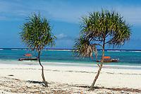 Tanzanie, archipel de Zanzibar, île de Unguja (Zanzibar), plage de Matemwe // Tanzania, Zanzibar island, Unguja, Matemwe beach
