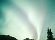 Alaska. Anchorage. Aurora Borealis.