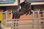 2009-01-moerzeke-hengst