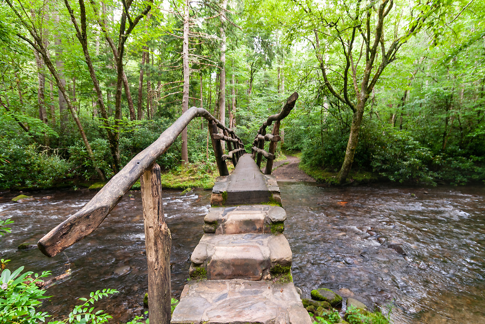 A rustic log footbridge crosses the Cataloochee Creek in Cataloochee Valley in Great Smoky Mountains National Park in Waynesville, North Carolina on Friday, August 14, 2020. Copyright 2020 Jason Barnette
