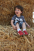 Young boy of four sits on a haystack Model Release Available