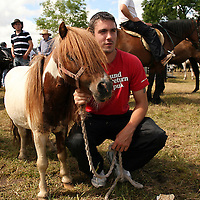 Sean Finneran and Tiny Tim watch the action at the annual Spancilhill Horse Fair on Tuesday.<br /> Photograph by Yvonne Vaughan