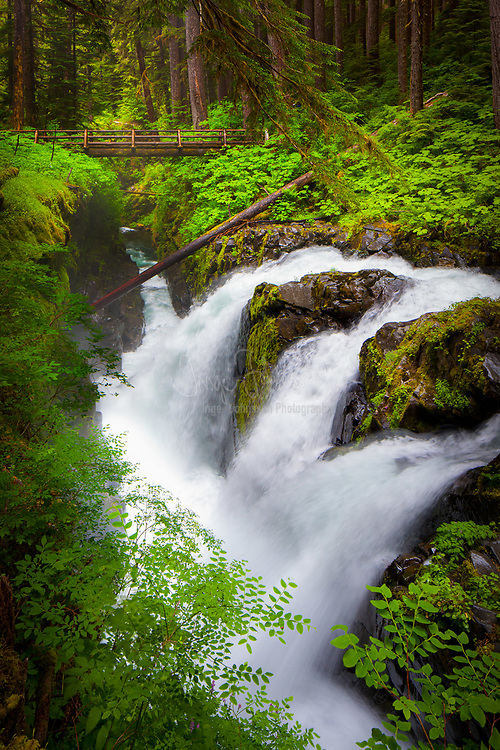 """Sol Duc Falls.  The name Sol Duc means """"magic waters"""". The Sol Duc River is divided into 3 or 4 separate streams (depending on flow) by an irregular rocky ledge. The water drops about 25 feet over the ledge into a tight cleft, making a 90 degree angle turn. The river passes beneath a footbridge, then drops about 10 feet into a deep teal pool."""