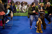 In front of the main stage at the Leipzig Trade Fair. Over 31,000 dogs from 73 nations will come together from 8-12 November 2017 in Leipzig for the biggest dog show in the world.