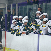 The bench. Celebrates during the Women's Hockey Home Game on Sat Oct 20 at The Co-operators Arena. Credit: Arthur Ward/Arthur Images
