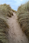 A general view of Bamburgh coastal sand dunes on Wednesday, March 17, 2021. The dunes are an area of over 40 hectares situated around the village of Bamburgh in Northumberland, England by the North sea. (Photo/ Vudi Xhymshiti)