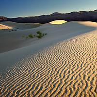 Ripples on the Eureka sand dunes, Death Valley National Park, California.