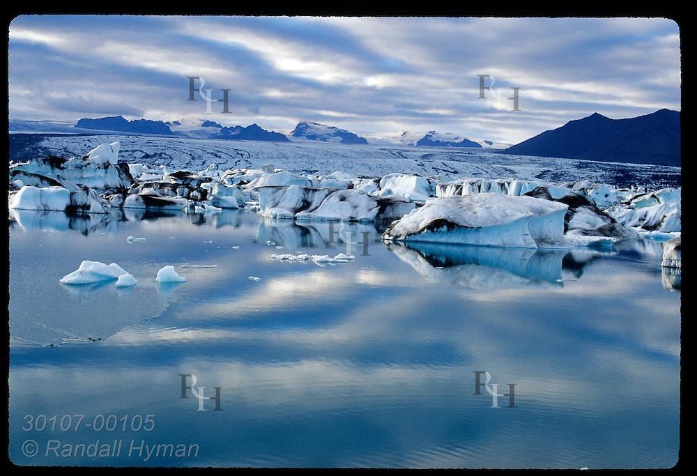 Ice that has calved from Breidamerkurjokull glacier floats in Jokulsarlon (Glacier Lagoon) amid reflection of clouds & sky; SE Iceland.