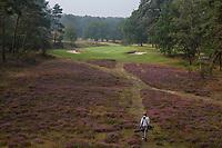 HILVERSUM - green hole 8.  par 3.  Hilversumsche Golf Club, COPYRIGHT  KOEN SUYK