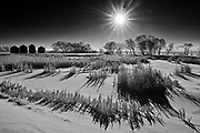 Hoarfrost on landscape at sunrise , West of Regina, Saskatchewan, Canada