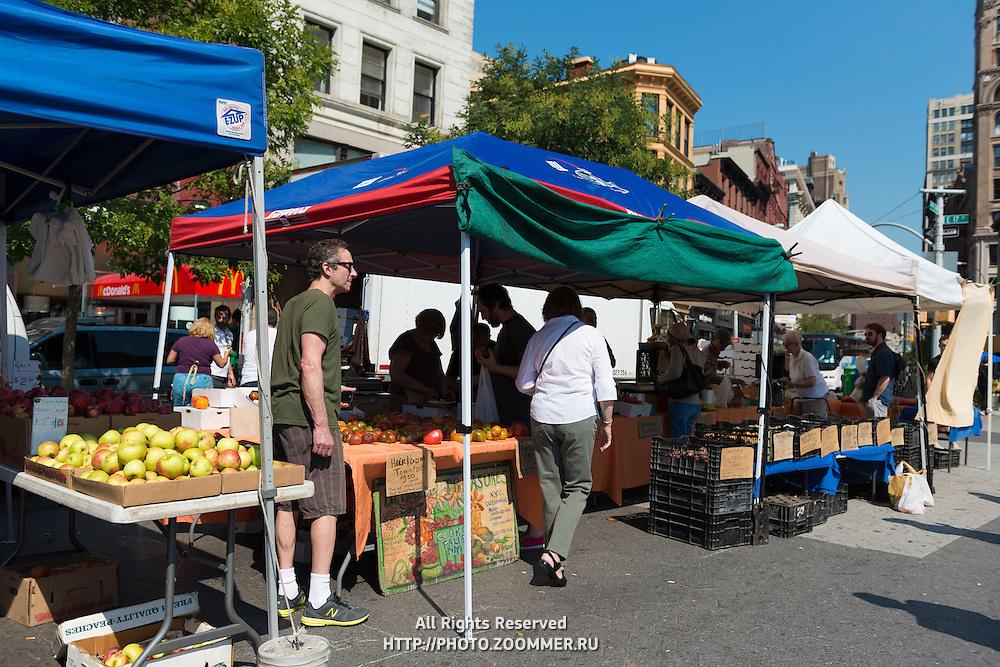 New York City greenmarket on Union Square, Manhattan, New York, USA