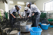 Staff wash rice, Nekka Shochu Distillery, Tadami, Fukushima, Japan, February 20, 2018. The Nekka shochu distillery was founded in July 2016 and at that time was the smallest shochu distillery in Japan. It makes shochu from locally-grown rice, and is helping support a local economy that has languished since the nuclear disaster of 2011.