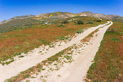 Dirt road in the Temblor Range, Carrizo Plain National Monument, California