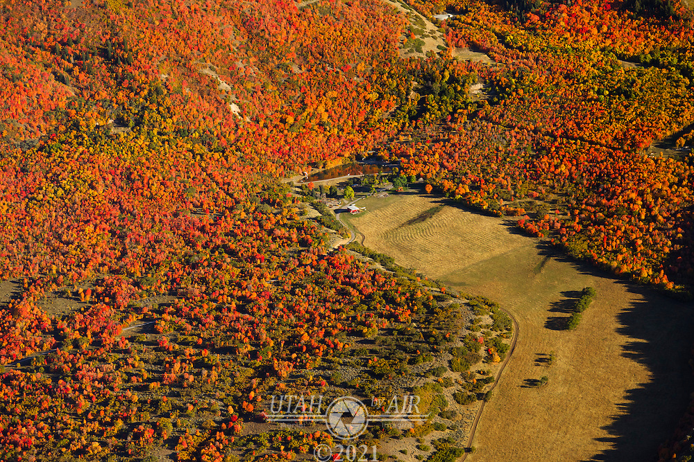 A family farm surrounded by the colors of changing scrub oak trees