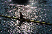 Henley-On-Thames, Berkshire, UK.,Saturday, 14.08.21,    Heat of the Princes Royal Challenge Cup,  M. FELLOWS, Long Beach,  Junior  Crew, USA., 2021 Henley Royal Regatta, Henley Reach, River Thames, Thames Valley,  [Mandatory Credit © Peter Spurrier/Intersport Images],