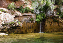 Trickles of water drip into the Colorado River from the red sandstone walls of Glen Canyon, below the Glen Canyon Dam, Arizona.
