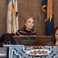 Navajo Nation Chief Legislative Counsel Dana Bobroff in the Navajo Nation Council Chambers Monday, Jan. 27 on the first day of the Navajo Nation Council Winter Session in Window Rock, Arizona.