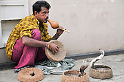 A snakecharmer, Sri Lanka. He is charming two spectacled cobras in baskets.