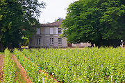 Chateau Rahoul and vineyard Graves Pessac Leognan Bordeaux Gironde Aquitaine France