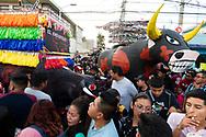 Multitud en el desfile de toritos de Tultepec.  /  A crowd walks through the annual toritos parade in Tultepec, Estado de México.