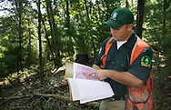 Matthew Paul, senior forester with the Department of Environmental Conservation Division of Lands and Forests, looks at a map of the areas where timber will be harvested in the Vernooy Kill State Forest in the Town of Wawarsing on Monday, Sept. 14, 2009.