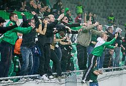 Green Dragons, supporters of Olimpija celebrate their 25th Anniversary during football match between NK Olimpija Ljubljana and NK Celje in 14th Round of Prva Liga Telekom Slovenije 2013/14, on October 19, 2013 in SRC Stozice, Ljubljana, Slovenia. (Photo by Vid Ponikvar / Sportida)