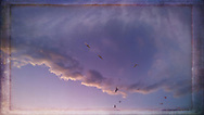 Eye in the sky made up of two cloud formations with purple and pink hues.