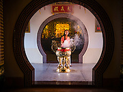 28 JANUARY 2017 - SAMUT PRAKAN, SAMUT PRAKAN, THAILAND: A woman lights incense before the Chinese New Year Lantern Festival at the Tham Katanyu Foundation shrine in Samut Prakan, a suburb about 15 miles from Bangkok. More than 5,000 handmade lanterns imported from Taiwan are hung on the grounds of the shrine. Some of the lanterns are traditional Chinese lanterns, others are in the shapes of people or deities. There is also traditional Chinese entertainment, likes lion dances, at the festival.     PHOTO BY JACK KURTZ