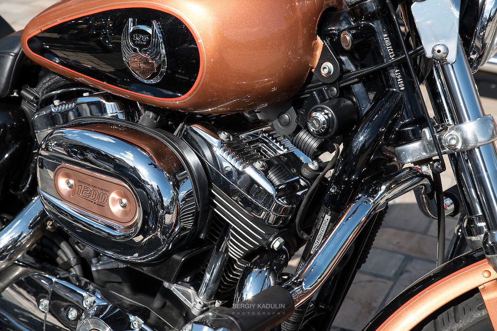 Слет Киевского отделения клуба Harley-Davidson. Фрагмент мотоцикла.