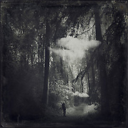 moody forest with man on forest path and two clouds - black and white image edited with texture overlays