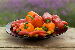 Peppers on purple glass bowl