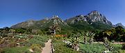 Kirstenbosh Botanical Gardens panoramic. Stitched panoramic image. Greg Beadle shoots panoramic images
